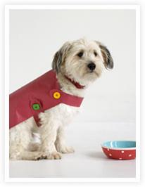 faire manteau pour chien